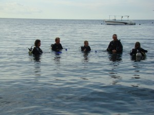 Pemuteran initiation à la plongée