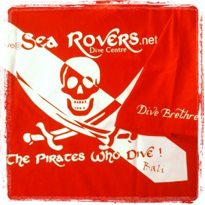 Garr! Pirate diver down!