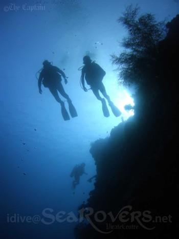 bali-pemuteran-diving-sea-rovers-menjangan
