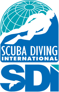 sdi e-learning - dive training