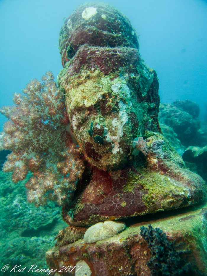 Statue at Temple Garden with soft coral and encrusting sponge