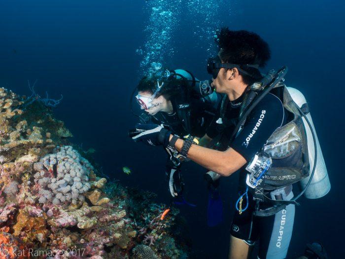 Divers, Underwater Cave, Menjangan, Bali, Indonesia