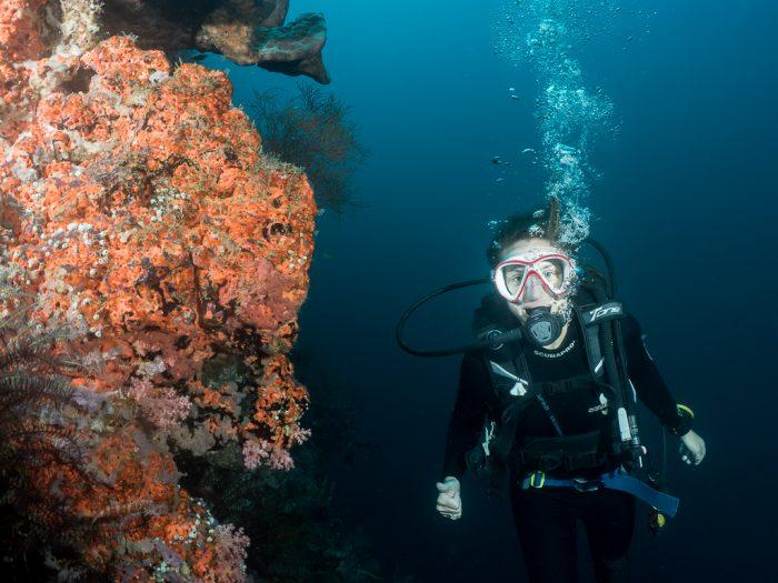 Underwater Cave, Menjangan, Bali, Indonesia