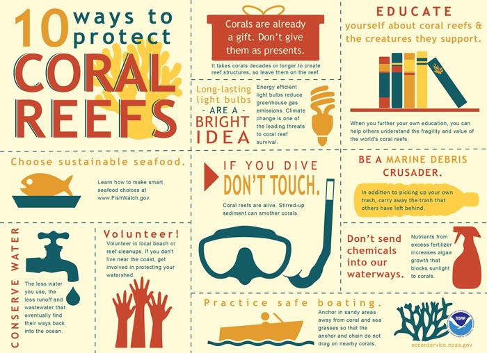 Environment, coral bleaching