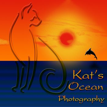 Kat's Ocean Logo