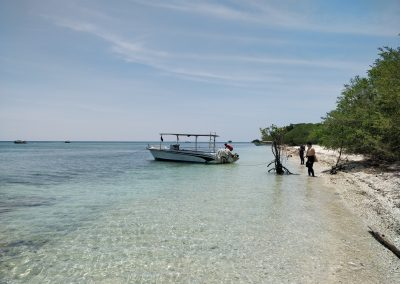 Looking east from Menjangan Island