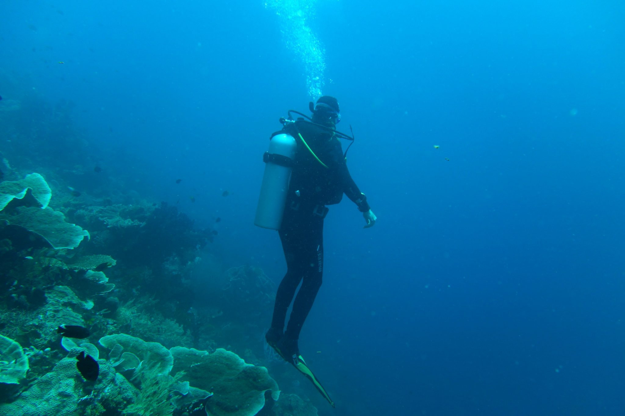 diver-1